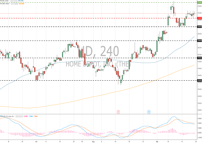 The Home Depot Inc. (HD/NYSE): general analysis