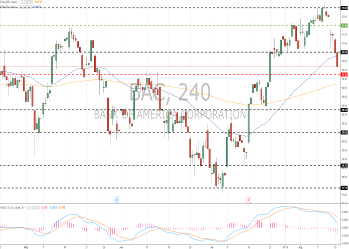 Bank of America Co. (BAC/NYSE): general analysis