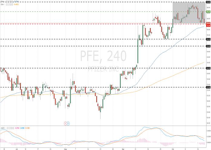 Pfizer Inc. (PFE/NYSE)